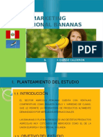 Plan Marketing HOLANDA