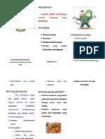 LIFLET GASTRITIS.doc