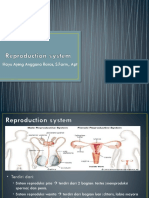 Reproduction system.pptx