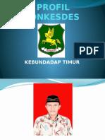 Profil Ponkesdes