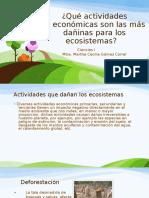 160853556 Que Actividades Economicas Son Las Mas Daninas