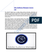 Customized Adobe Audience Manager Course Training Program