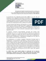 Junta de Proteccion 2013