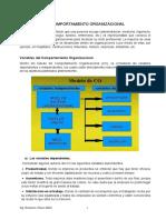 Variables Del Comportamiento Organizacional