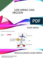 Asam Amino dan Protein.ppt.ppt