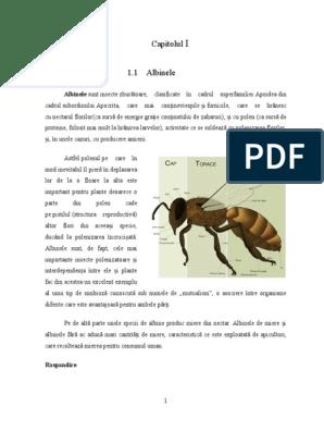 killer albine de grăsime efecte secundare