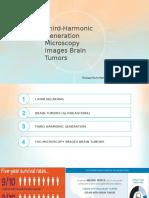 Third Harmonic Generation Microscopy Images Brain Tumors