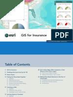 Insurance Mapping GIS.pdf
