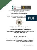 BIOCARBONES_CENIM_CSIC