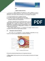 M1-Fisiologia de La Vision