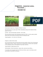Tree platataion g45de.docx