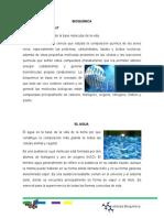 sintesis Bioquimica
