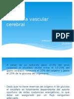 Anatomía Vascular Cerebral