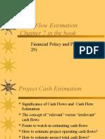 Cash Flow Estimation1