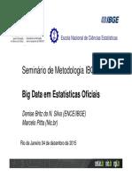 C11-BIGDATADeniseePittaSMI2015
