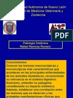 164107573-Sistema-Digestivo-Patologia.ppt