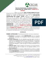 Convenio Proyección- SIN ARL