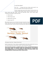 Belajar Pada Semut