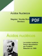 ACIDOS NUCLEICOS_2