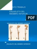 miembroinferior-170211022754
