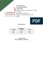 Examen_de_Auditoria isa y fran.docx