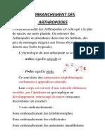 Tp Sv4 Faunistique Arthropodes