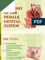 01 Anatomy of Female Genital System Dr.osman