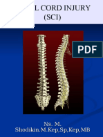 Asep Spinal Cord Injury (SCI)