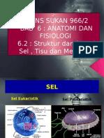 sainssukan- Bab 6 struktur & Fungsi sel.pptx