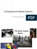 O'Donoghue.introduction to Motor Systems.112