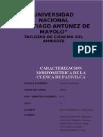 Informe D. Cuenca de Pativilca