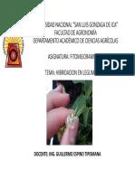 Manual de Hibridacion en Leguminosas