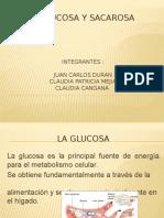 La glucosa y sacarosa