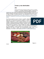 Cacao y Sus Derivados