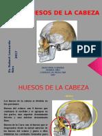 Anato - 4 Huesos de La Cabeza Anatomia 2017