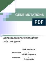 07_GENE_MUTATIONS.pptx
