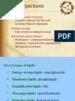Lipid for International Class