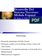1-clase-embrio-sn-me1.pdf