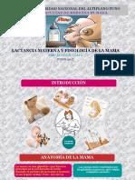2. Lactancia Materna y Fisiología de La Mama
