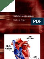 3.Cardiovasc-1-RO