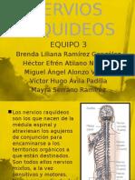 97317798-NERVIOS-RAQUIDEOS.pptx