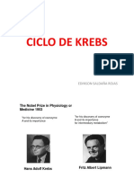003-Ciclo de Krebs
