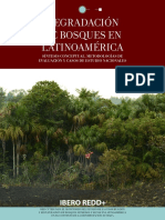 Degradacion de Bosques en Latinoamerica