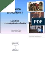 Cultura_como_objeto_reflexion[2017].pdf