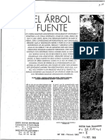 El Arbol Fuente - Horizon Documentation-IRD