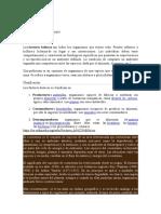 analisis hd2