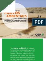 cartilla PASIVOS octubre 2016.pdf