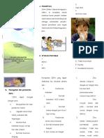 Leaflet Ispa Pkl