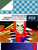 arteria axilar exposicion.pptx