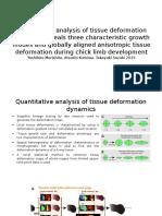 Quantitative Analysis of Tissue Deformation Dynamics